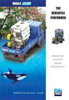 Whale Brochures
